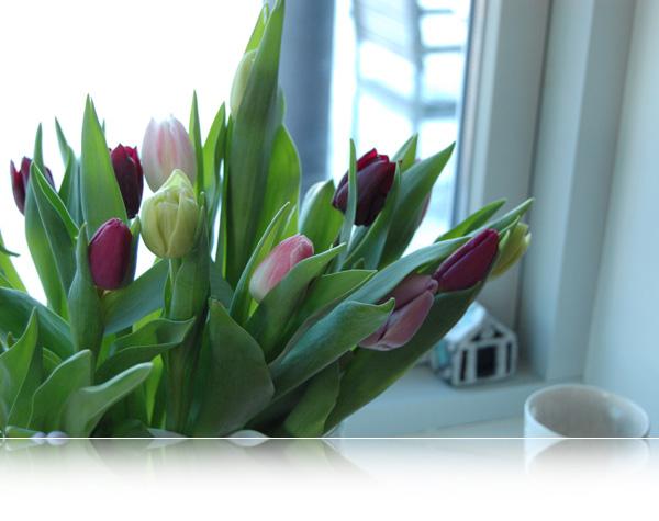 Friskt i vasen...