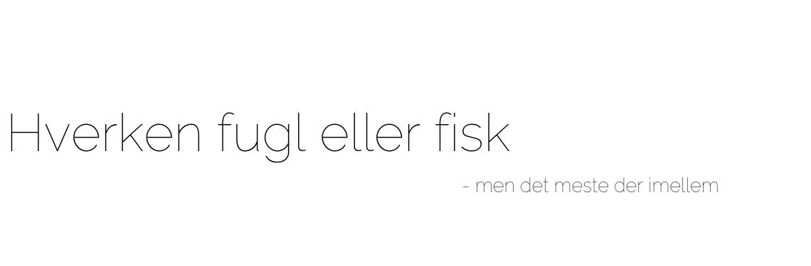 Hverken fugl eller fisk