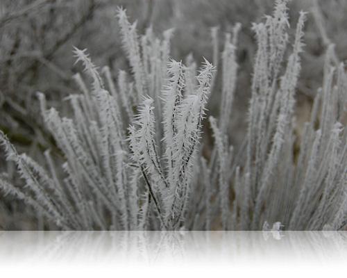 Stikkende koldt…