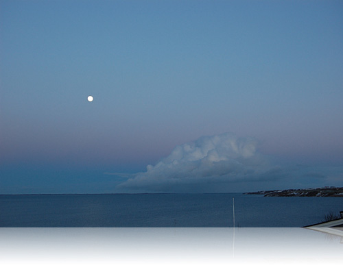 Måneskin på Limfjorden…