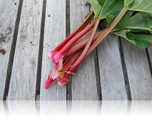 En håndfuld røde sprøde stilke…