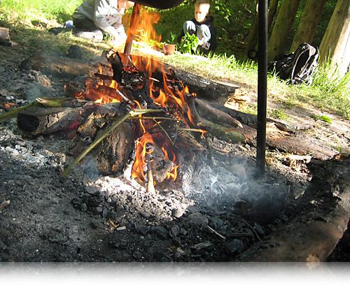 Vild ild…