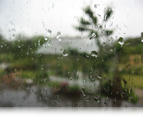 Regn…