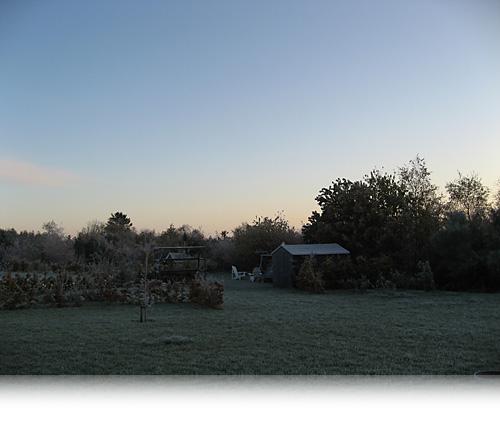 Novembermorgen…